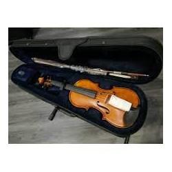 Violino - Eko EBV1413 1/2